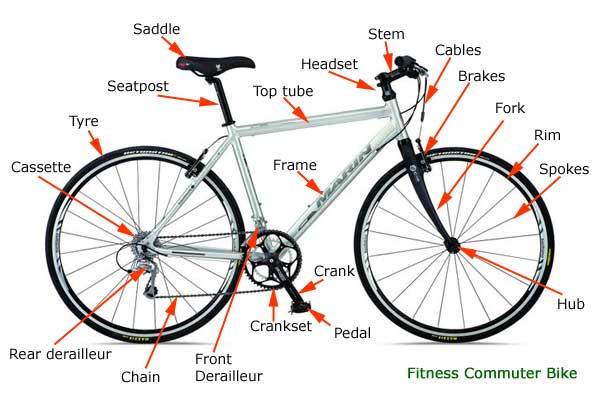 descriptive mechanism of bicycle Bicycles aren't just for kids learn the mechanics of bicycles, from bicycle parts to gear ratios, and check out prices and reviews on bicycles.