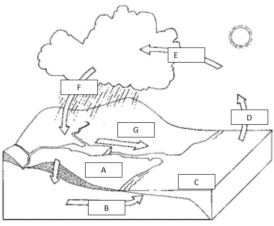 ImageQuiz: Water Cycle Match