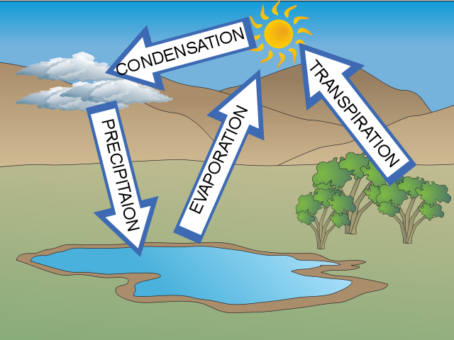 Water Cycle Diagram Quiz Gallery How To Guide And Refrence
